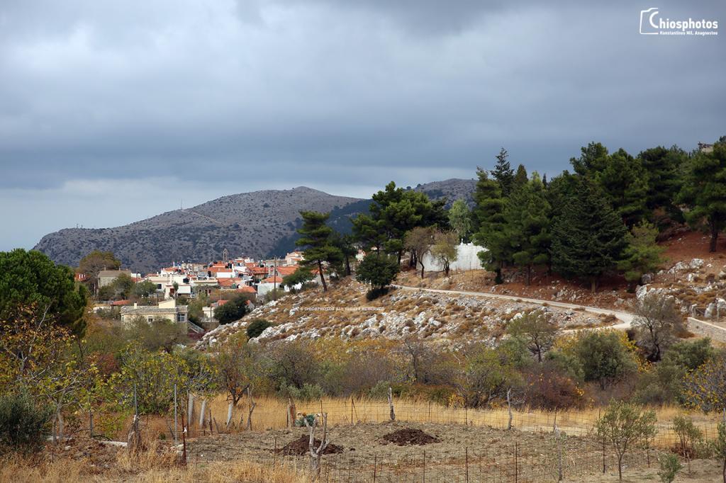 Χωριό Πιτυός Χίος