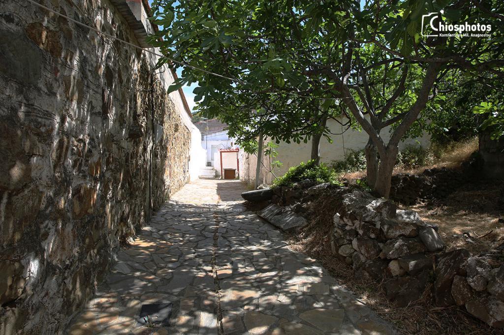 Χωριό Εγρηγόρος Χίος